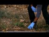 Criminal minds 4 season 13 episod | Мыслить как преступник 4 сезон 13 серия